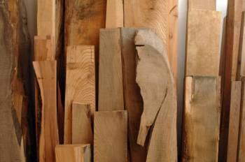 Holzarten Erkennen holzarten erkennen wie ein schreiner zuhause